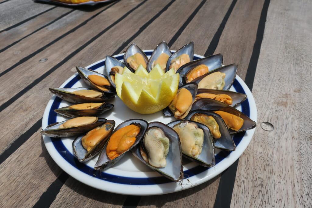 ガリシアのリアス式海岸で養殖されるムール貝
