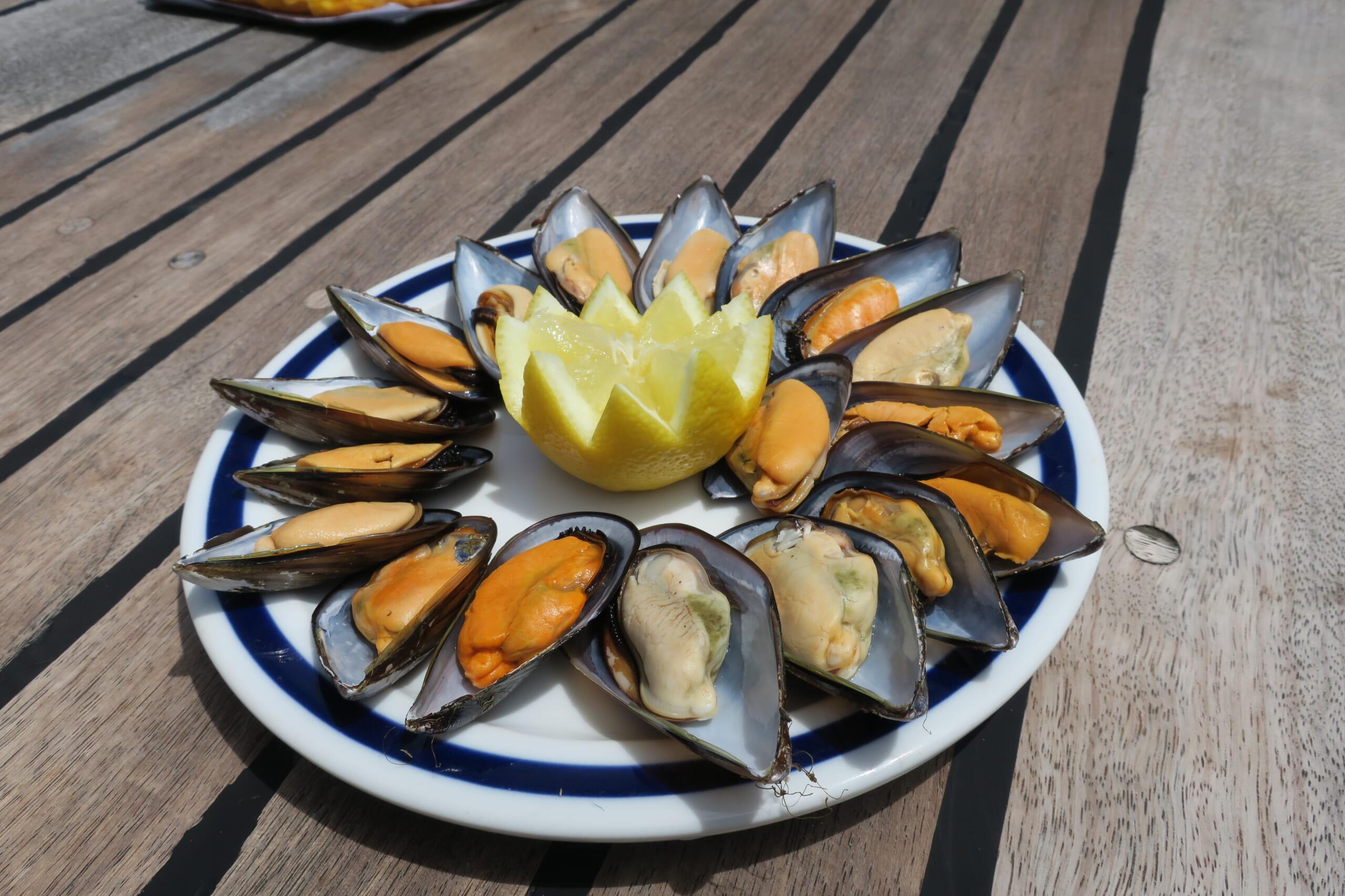 北スペインのガリシアのムール貝