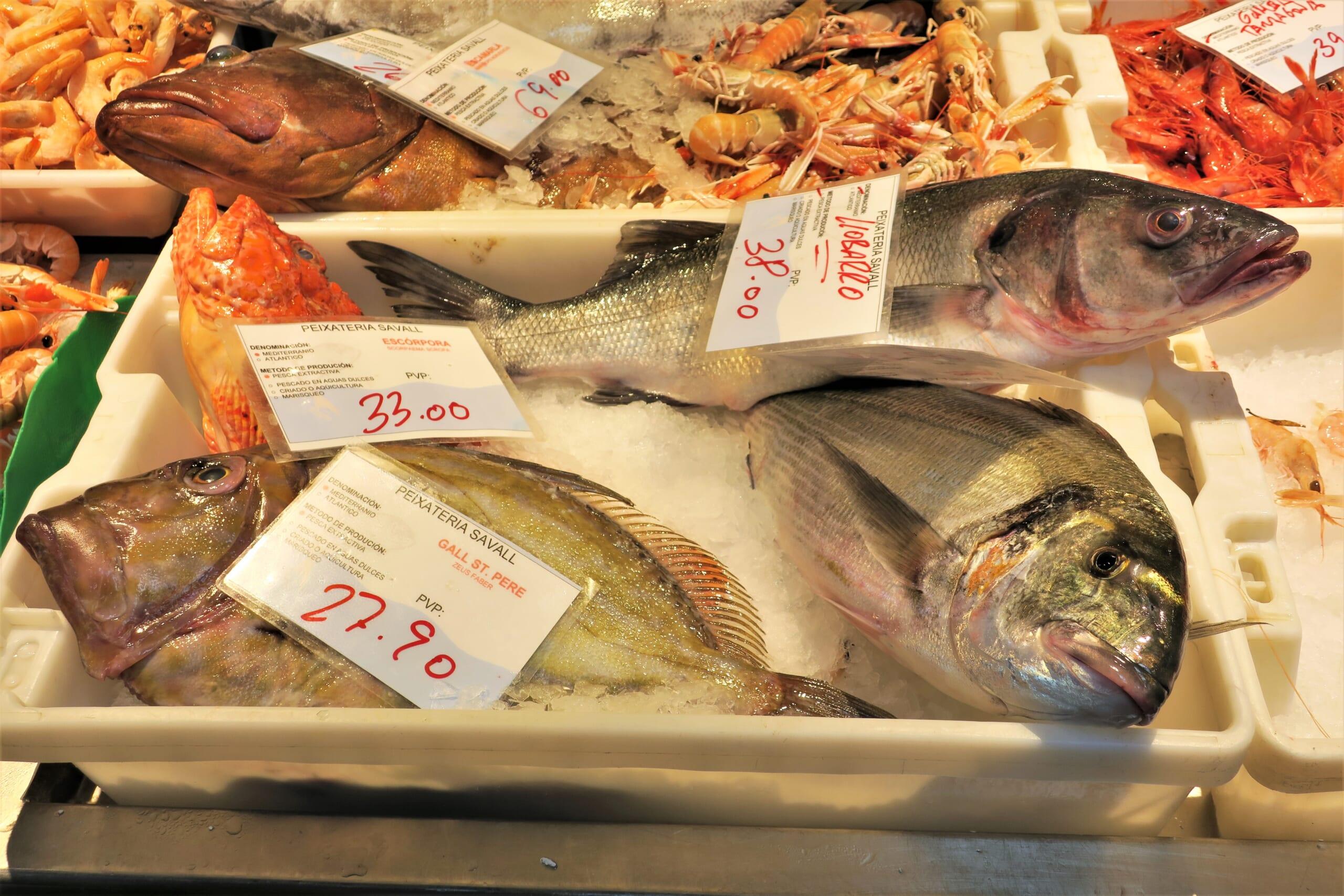 北スペインの魚介類
