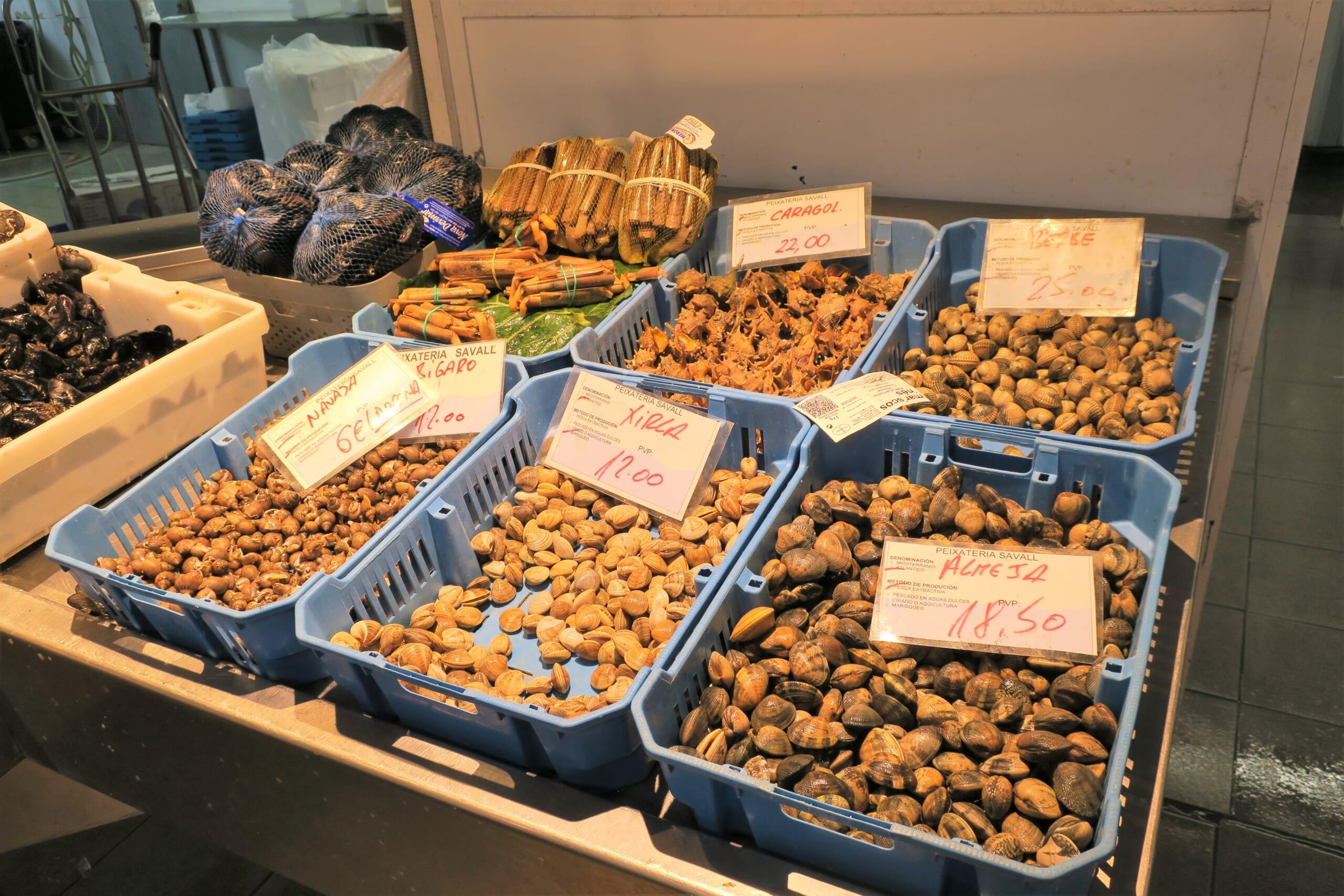 スペインの魚屋の色々な貝類